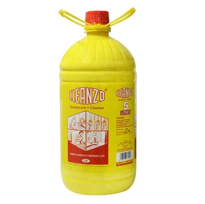 Cleanzo Floor Cleaner (5 Ltr CAN)